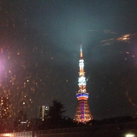 東京さる時には大雨と雷に見舞われました